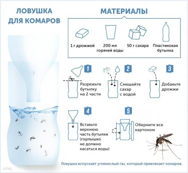 10 способов избавиться от комаров