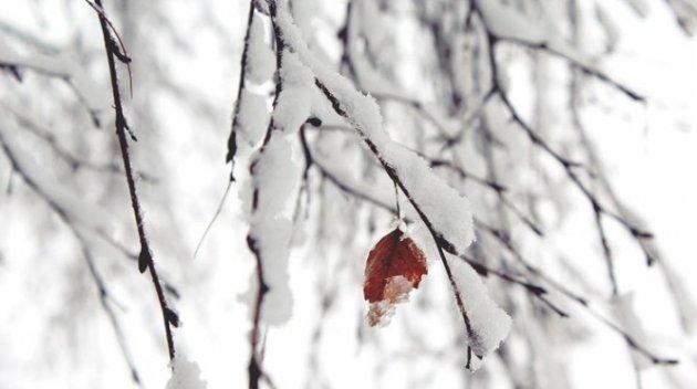1-ый снег выпал в столицеРФ