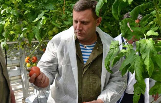 Захарченко распорядился отбирать весь урожай у граждан ОРДО