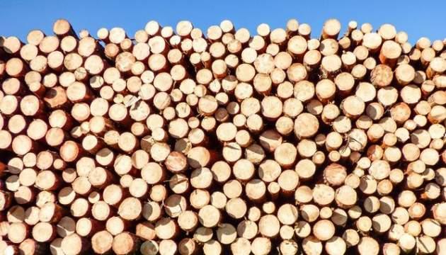УПорошенко пояснили, что нетак сзаконом оконтрабанде леса