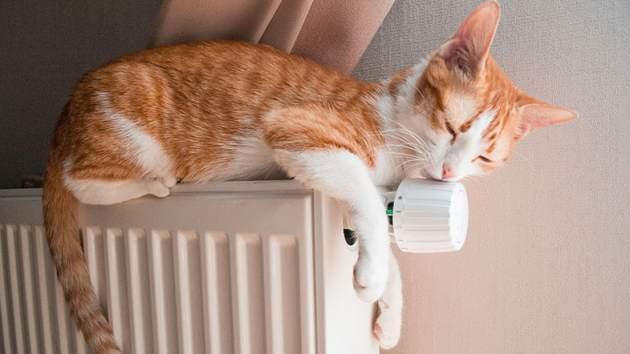 ВНКРЭКУ проинформировали, зачем вУкраинском государстве впервый раз вводят проверку качества услуг теплоснабжения
