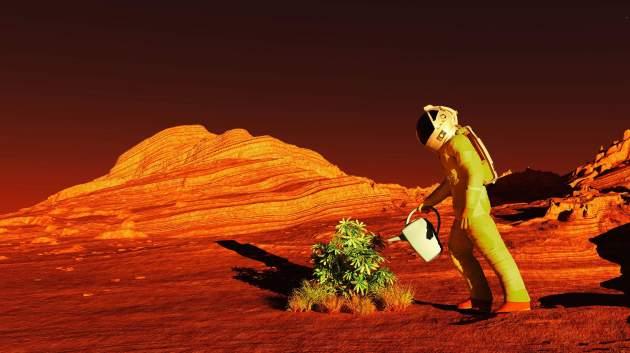НаМарсе отыскали реки: ученые опубликовали необычные фото