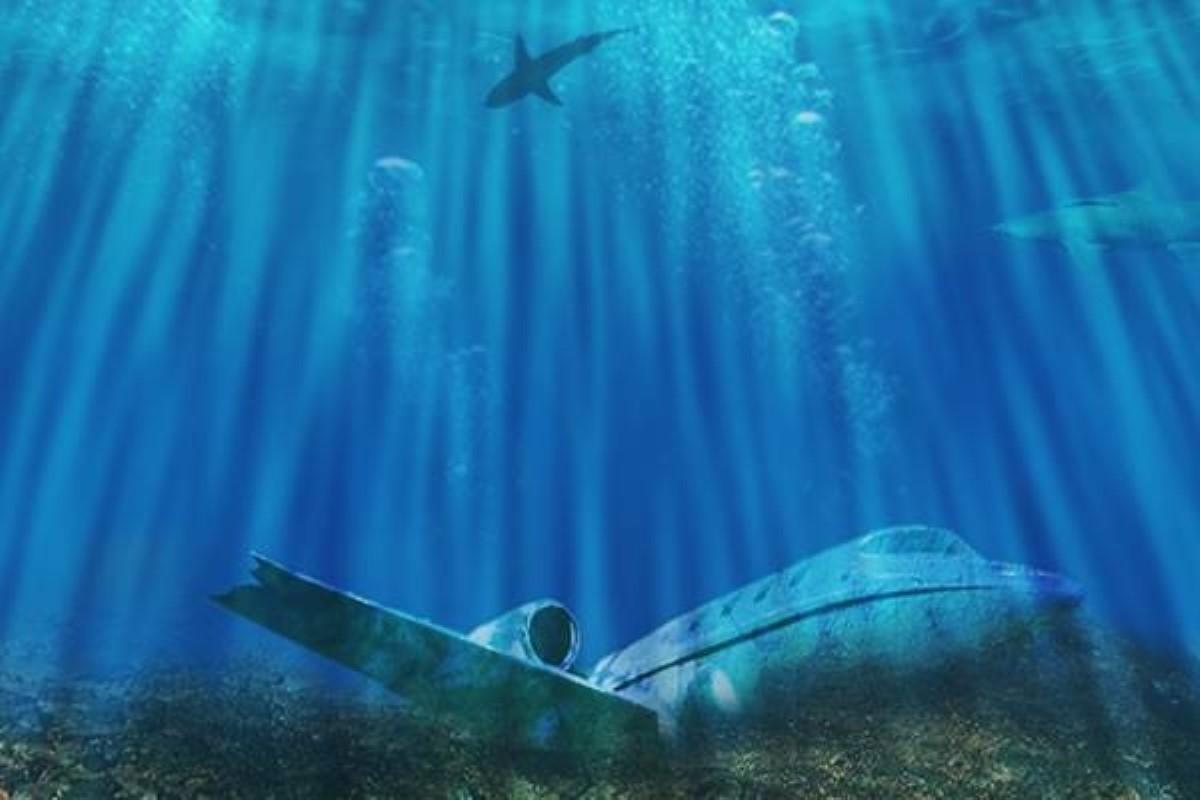 фото бермудского треугольника под водой вьющихся видов жимолости