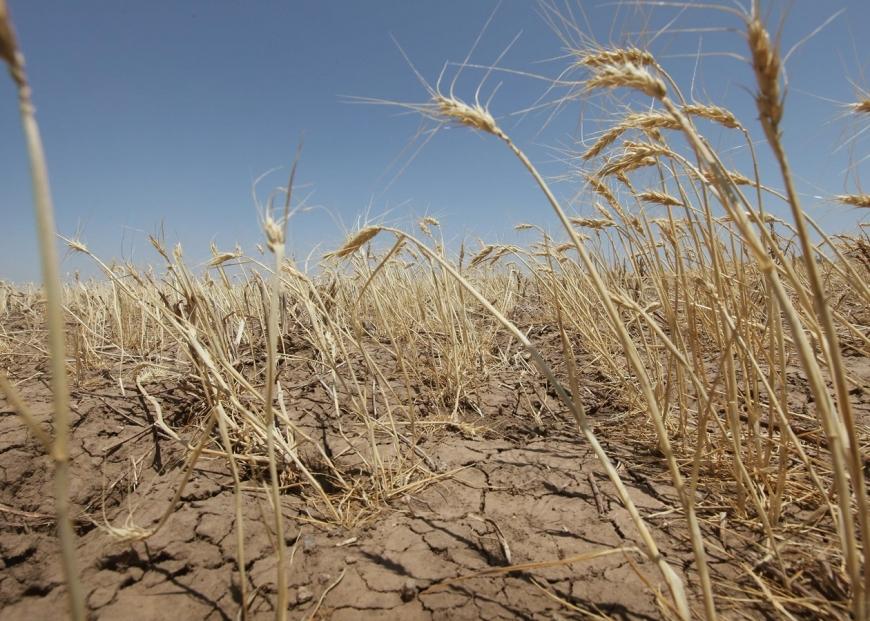 Украину ждут катаклизмы из-за изменения климата » Вести-UA.net ...